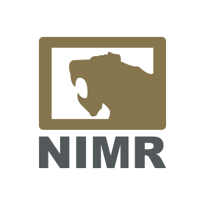 NIMR Automotive LLC